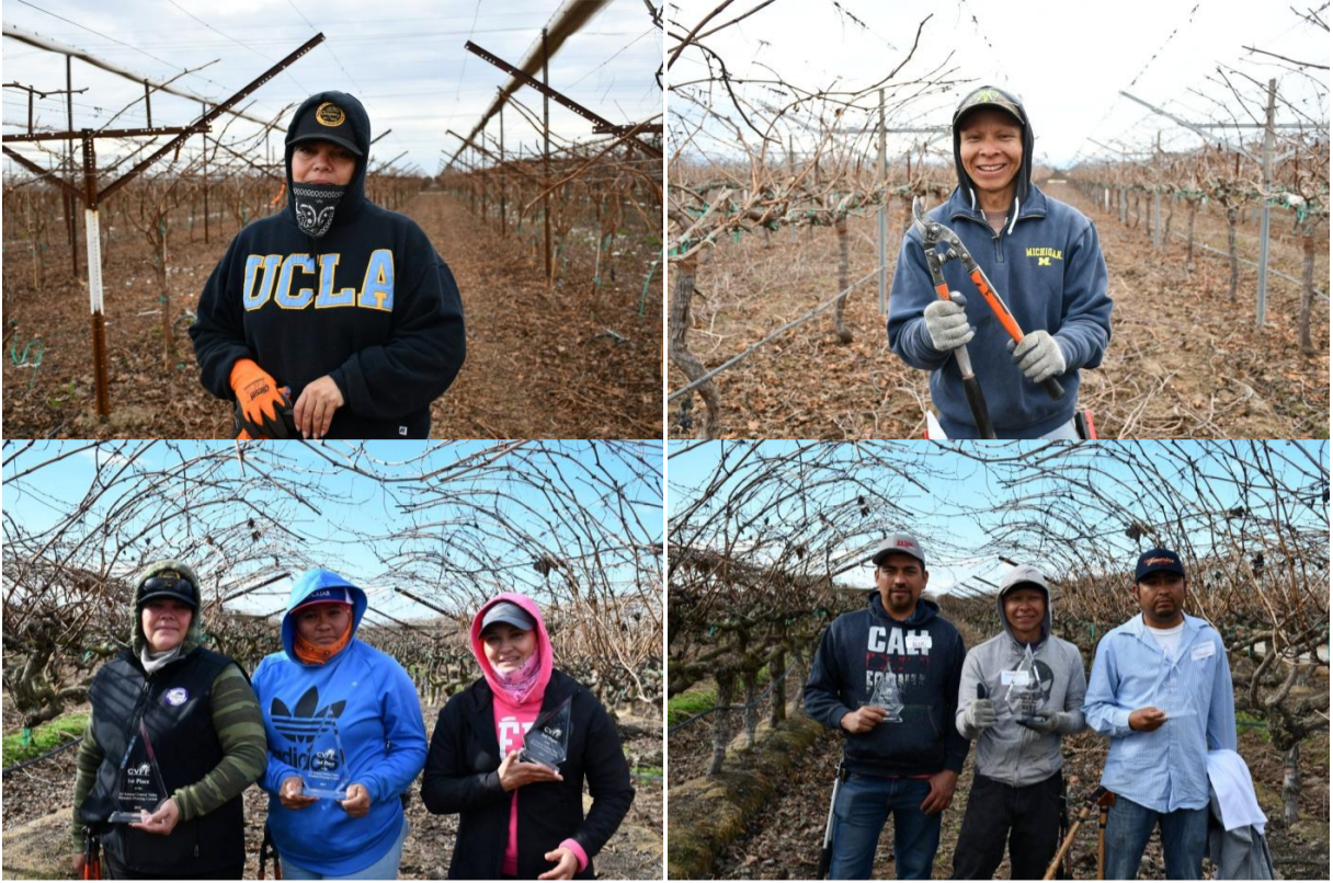 CVFF 2019 Pruning Contest